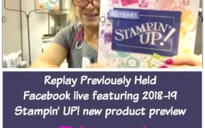 Stampin' UP! New Product Review – 2018-19 Stampin' UP! sneak peeks