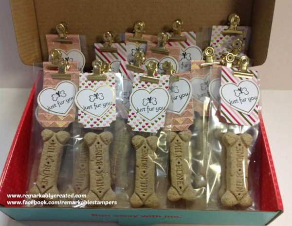 January My Paper Pumpkin Craft Kit From Stampin Up Remarkable