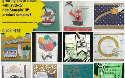 2016-17 Stampin' UP! On Stage Display Board Samples