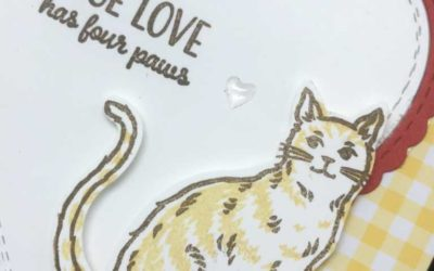 Introducing Nine Lives stamp set from Stampin' UP!