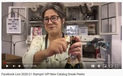 2020-21 Stampin' UP! preorder Product Sneak Peeks